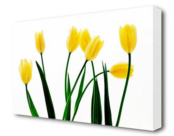 Canvas print and frame
